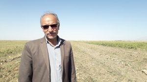 توزیع 2 هزار و 200 تن  جو با قیمت دولتی ویژه خشکسالی  بین دامداران بردسکن